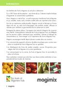 Página 4 do Magimix Duo Salad & Juice